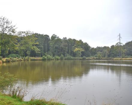 De 1,5 hectare grote visvijver van La Grande Roche is zeer gekend onder de professionele vissers