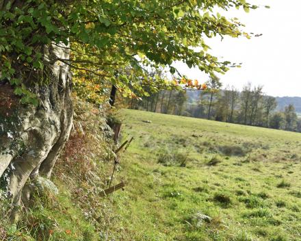 La Grande Roche is een privé domein van 32 hectare in een oase van groen