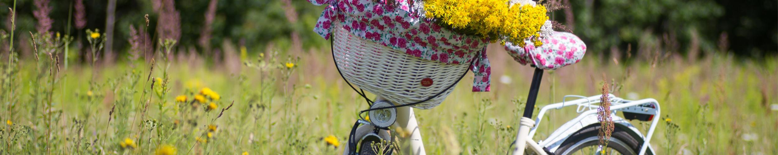 Kom tot rust tijdens een ontspannen fietstocht doorheen prachtige natuur