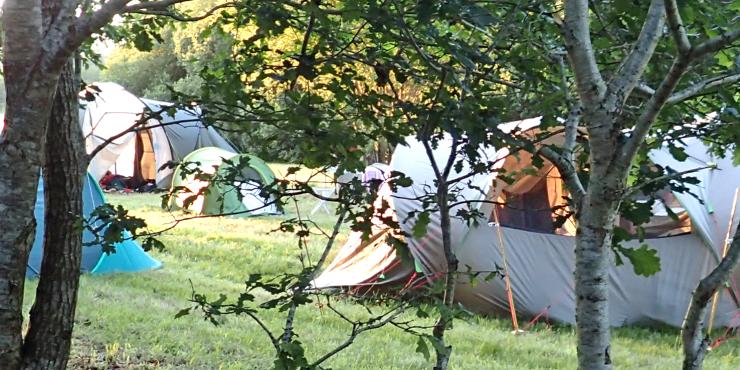 Op het prachtige La Grande Roche word je verwend met mooie grote plaatsen voor je tent, caravan of mobilhome